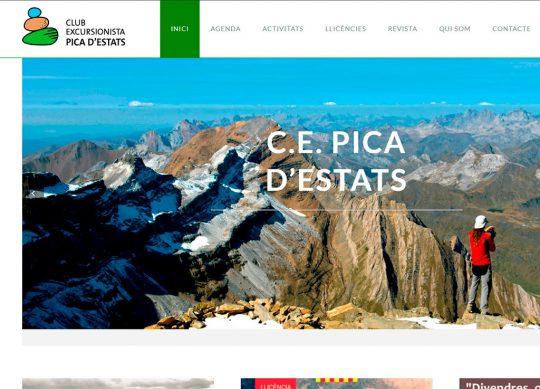 Diseño & desarrollo web Cepicadestats